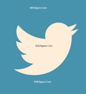 twitter traffic wikiagain.com